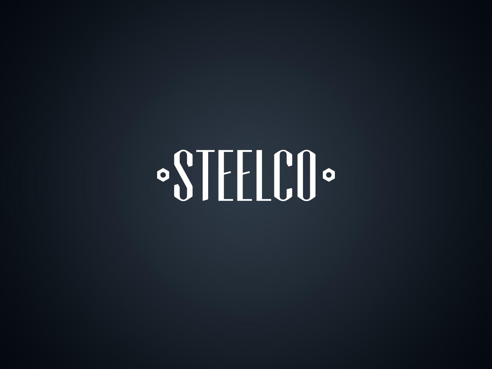 Steelco Logotype / concept